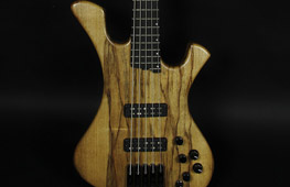 Agolas electric bass
